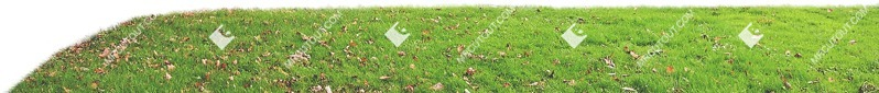 Cut out Cut Grass Grass 0004 preview