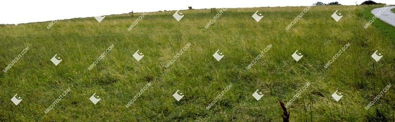 Cut out Grass 0009 preview