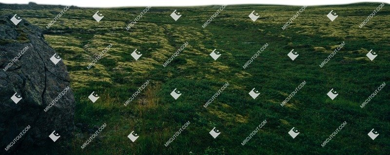 Cut out Grass 0020 preview