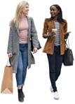 Friends walking two women shopping on an autumn day | MrCutout.com