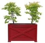 Cut out Potted Tree Acer Platanoides 0002 | MrCutout.com